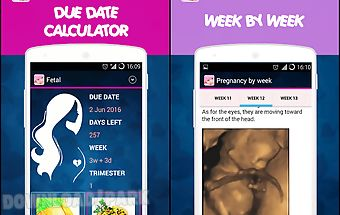 Pregnancy tracker ♥ pregnant