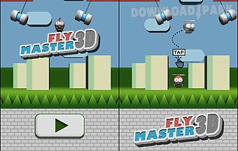 Fly master 3d