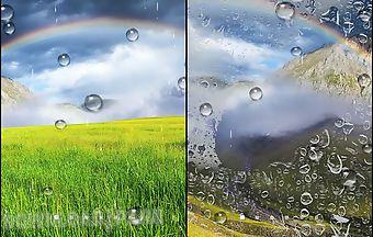 Rainbow by blackbird wallpapers