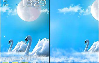 Swans lovers: glow