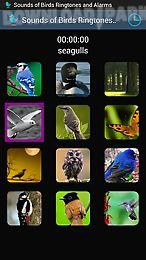 sounds of birds ringtones