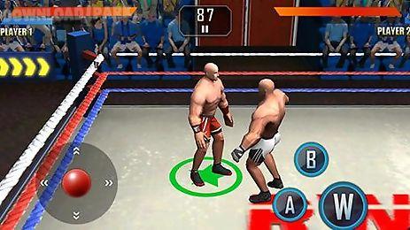 wwe wrestling 3d