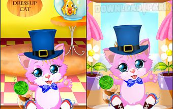 Dress up cat