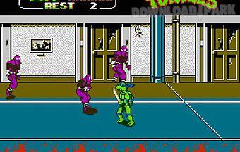 Teenage mutant ninja turtles 2th..