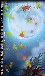 autumn tint live wallpaper