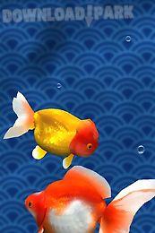 gold fish 3d free lwp