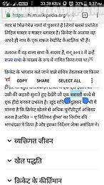 hindi dictionary pro