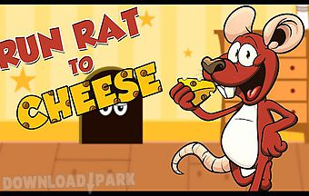 Run rat to cheese