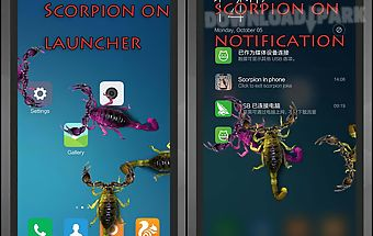 Scorpion in phone joke