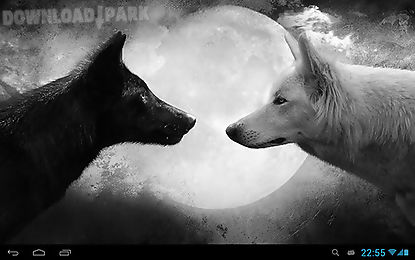 wolves animals