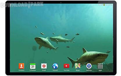 tiger sharks 3d live wallpaper
