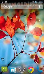 rains live wallpaper