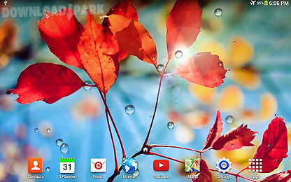 rains live wallpaper