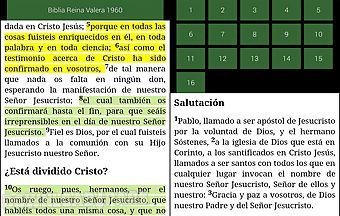 Nrsv bible - free