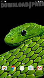 snakes by fun live wallpapers