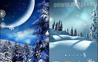 Winter night by blackbird wallpa..