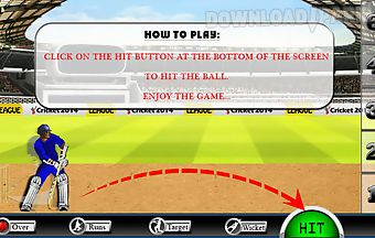 Cricket 2014 game