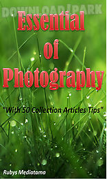 essential of photography
