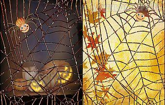 Halloween: spider