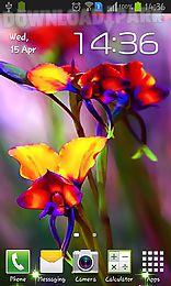 little summer flowers