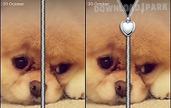 Cool puppy zipper lockscreen