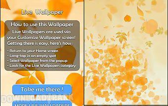 Leaves 3d live wallpaper
