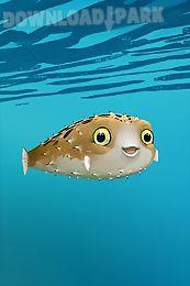blowfish - live wallpaper