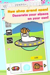 fuwapaca spa - collect alpacas