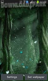 fairy forest by iroish