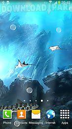 3d sharks live wallpaper lite
