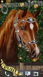 arabian horse free wallpaper