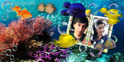 couple photo aquarium lwp