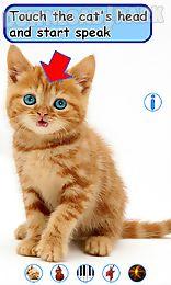 talking, dancing cat.