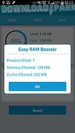 clean memory ram