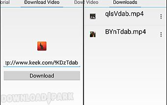 Video downloader for peek