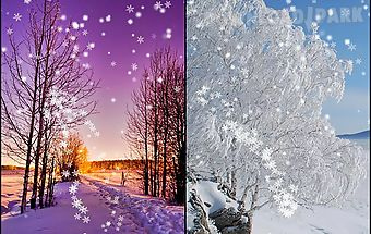 Winter snow by live wallpaper ho..