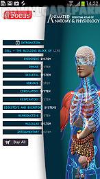 anatomy & physiology-animated