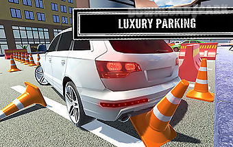 Luxury parking