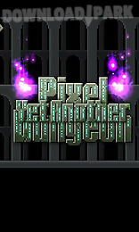 yet another pixel dungeon
