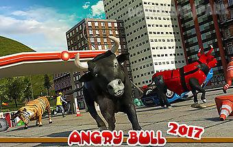 Angry bull 2017