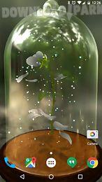 enchanted rose 3d