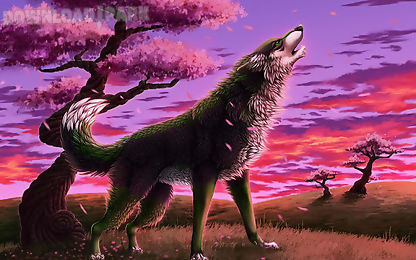 3d wolf wallpapers