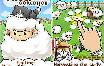 Baw wow sheep collection