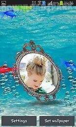 photo aquarium