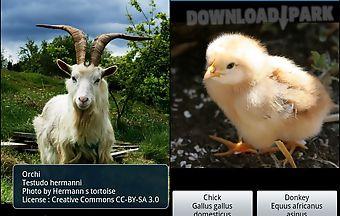 Zoo : farm animals games