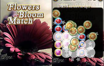 Flowers bloom match