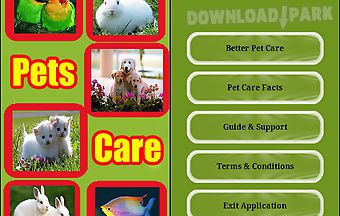 Pets and pets care