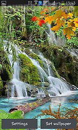 forest, waterfall, lake