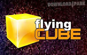 Flying cube