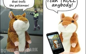 Hamster trolls talking hamster